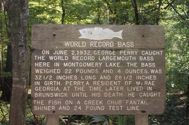 World Record Large Mouth Bass